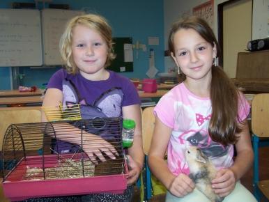 Náhled ke článku Den zvířat ve 4.ročníku